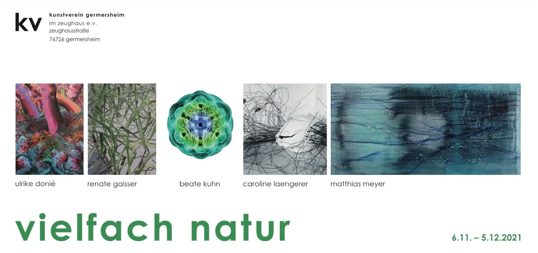 Ausstellung vielfach natur mit Beispielen aller teilnehmen Künster:innen